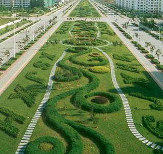 园林绿化建设不能只求绿色不见生态